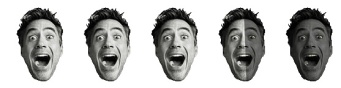 3.5 Robert Downey Heads