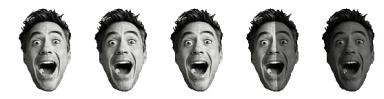 3.5 Robert Downey Heads