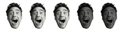 3 Robert Downey Heads