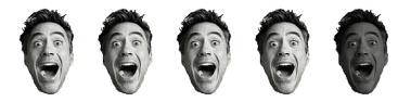 4 Robert Downey Heads