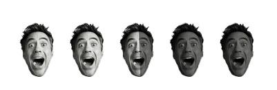 2.5 Robert Downey Heads