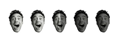2.5 Robert Downey Heads